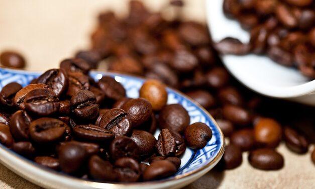 Kawiarka – jakie ma zalety i jak działa? Sprawdzamy!